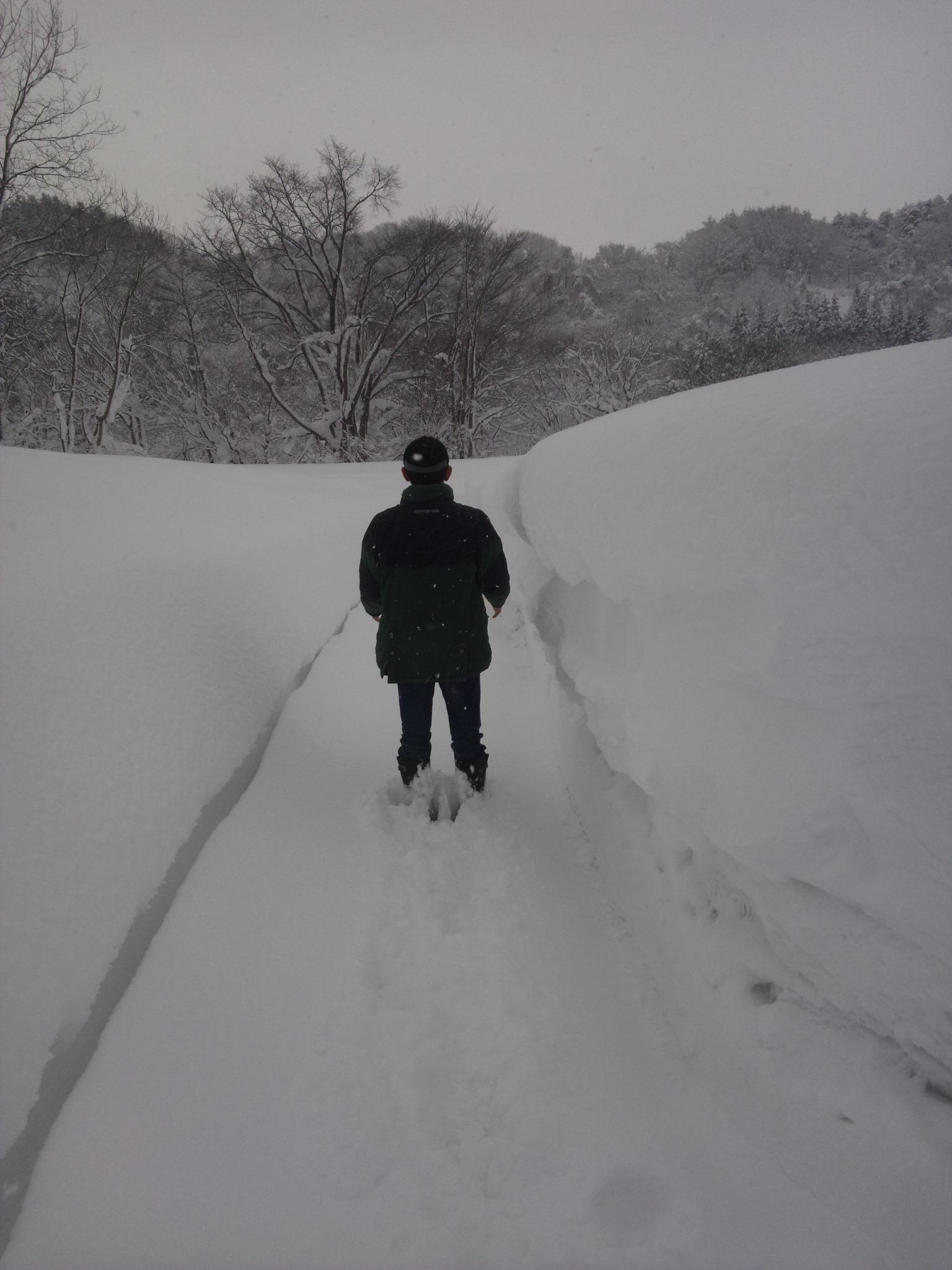 青森市積雪138cm_e0186499_16484227.jpg