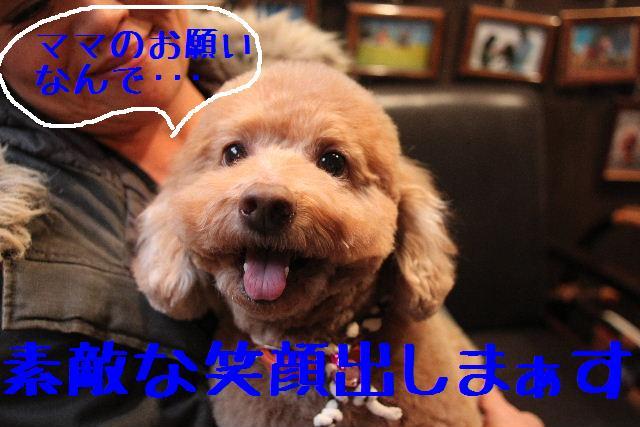 b0130018_2303485.jpg
