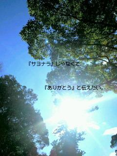 f0039541_9485359.jpg