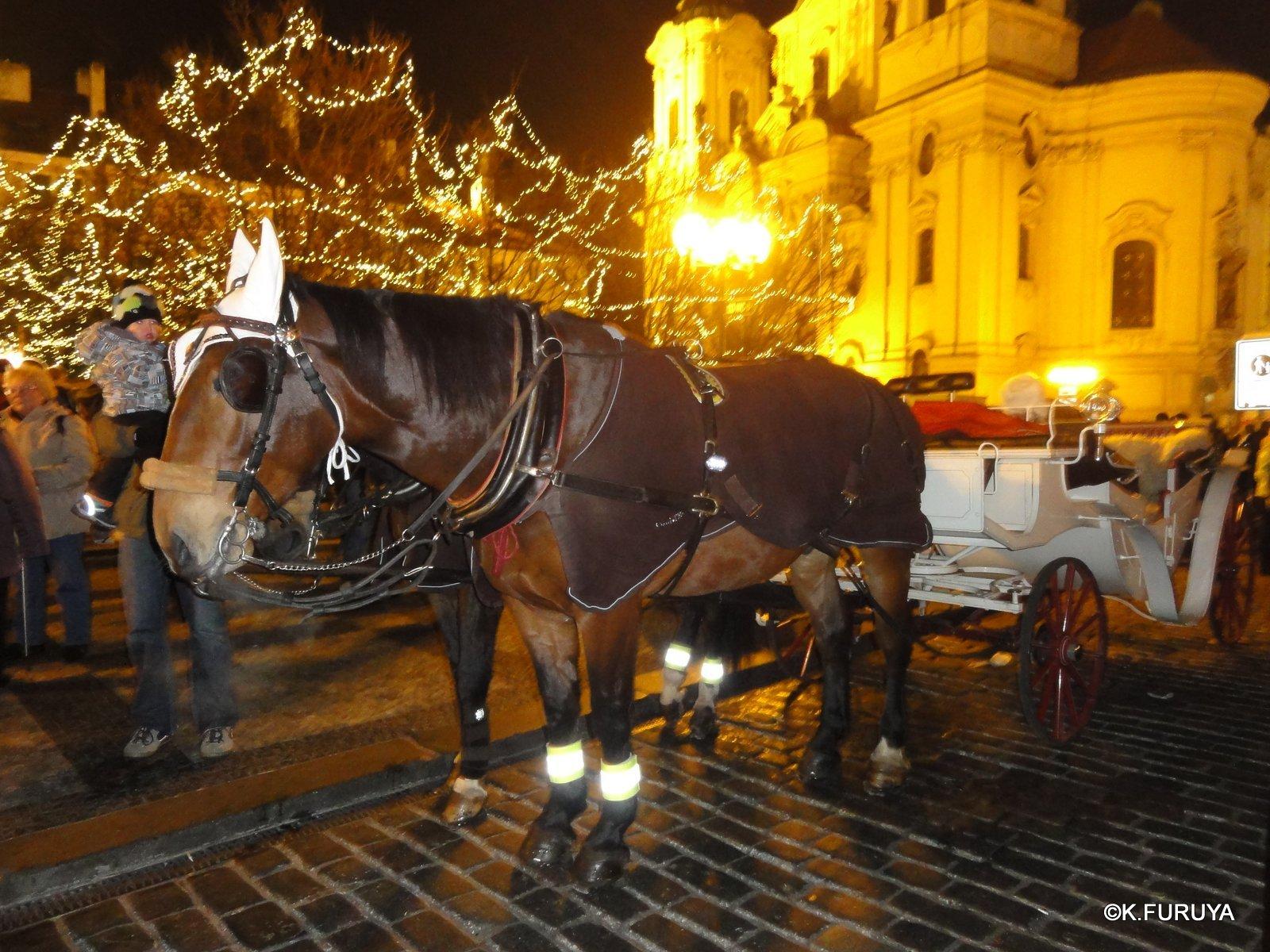 プラハ 14 旧市街広場のクリスマスマーケット_a0092659_2353115.jpg