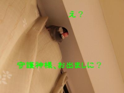 b0158061_21502490.jpg