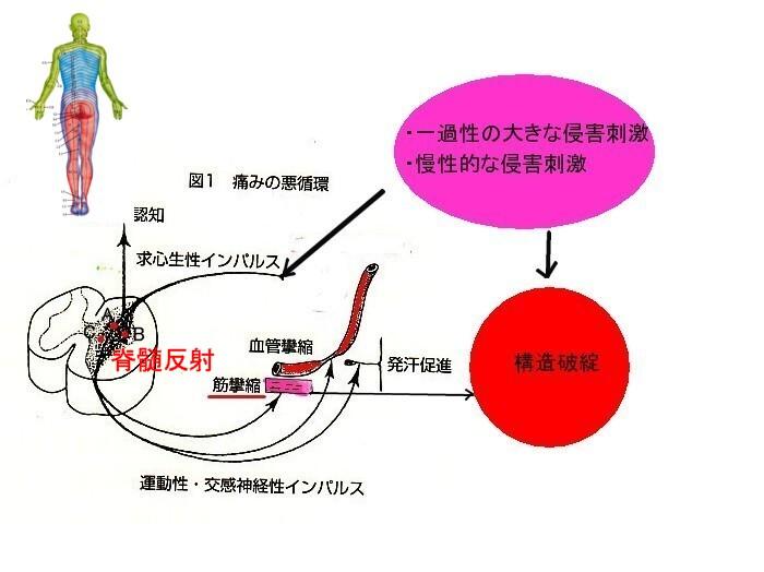 b0052170_1631738.jpg