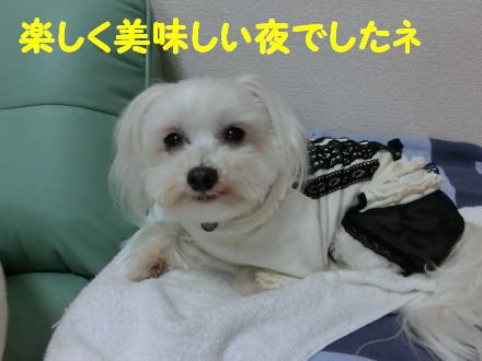 b0193480_20114493.jpg