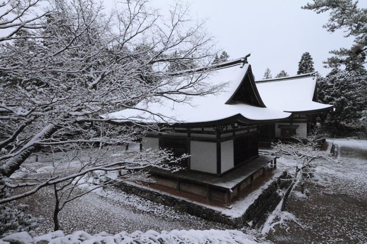 神護寺_e0051888_20504157.jpg