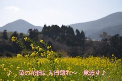 f0032712_02132.jpg