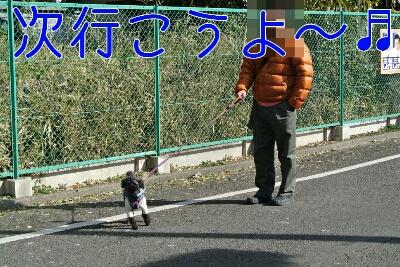 b0236618_12155100.jpg
