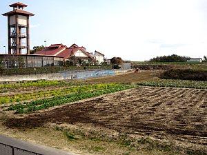春です!体験農園の準備が始まりました!_d0120421_17281090.jpg