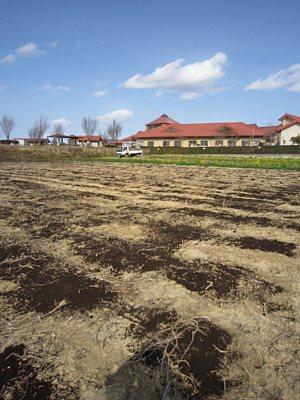 春です!体験農園の準備が始まりました!_d0120421_1739942.jpg