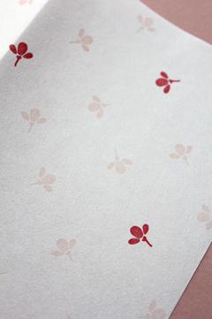 紙モノ好きとして・・・懐紙もいいね☆_a0275527_2222227.jpg