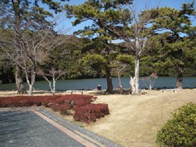桜ヶ池 竜神伝説_f0129627_9183070.jpg