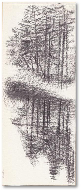 木の芽_c0107829_18384737.jpg