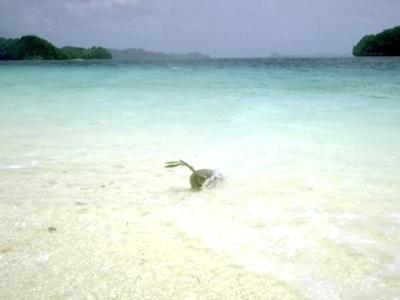 Hawaiian Boyz/Aloha \'Oeをささやくように口ずさみながら海上の道をたどってまだ見ぬ南の島ニライカナイを目指す。_c0109850_16261376.jpg