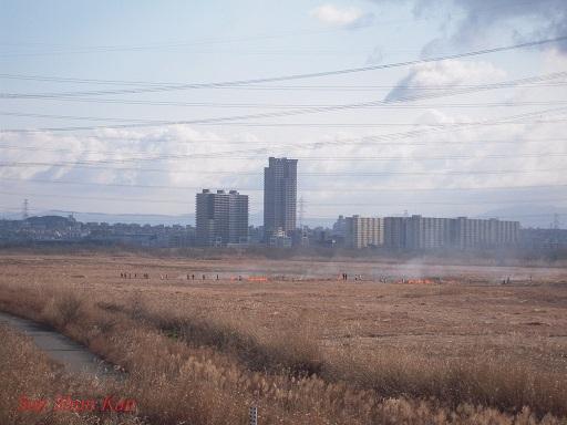 鵜殿のヨシ原焼き 2013年2月24日_a0164068_040833.jpg