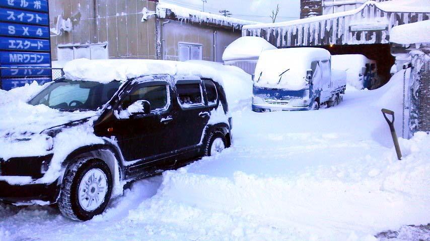 今日の大雪!_f0150893_13421128.jpg