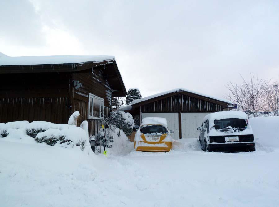 今日の大雪!_f0150893_13424740.jpg