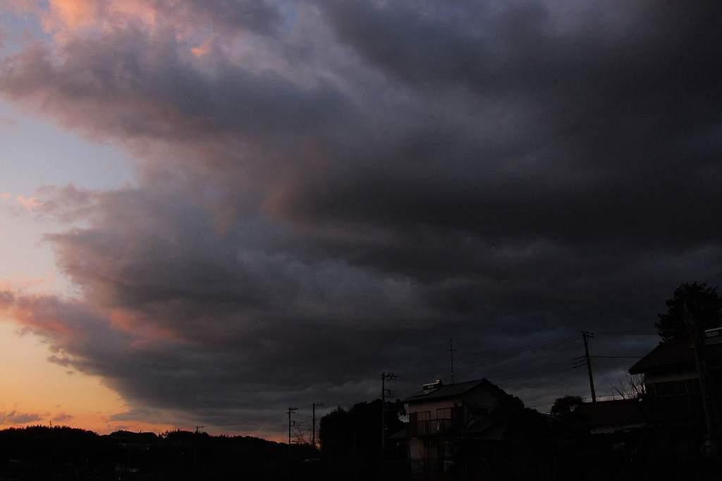 ルリビタキ/今日のカワセミ&アリスイ/地震雲??/満月_b0024798_2059193.jpg