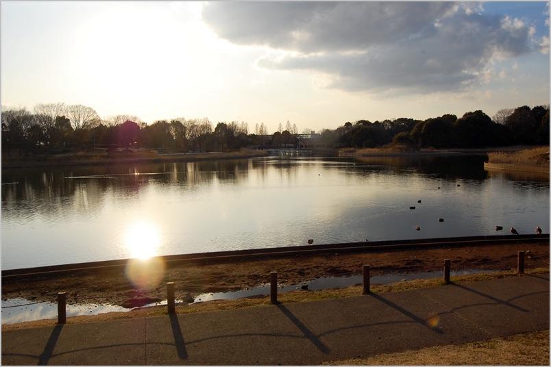 大好きな公園で遊んだあとは,3度洗いの刑が待ってました_a0155999_0125259.jpg