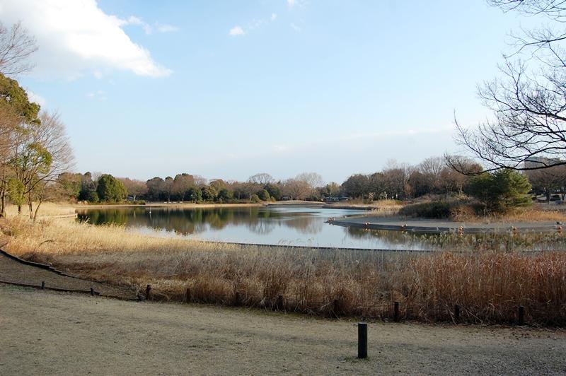 大好きな公園で遊んだあとは,3度洗いの刑が待ってました_a0155999_093070.jpg
