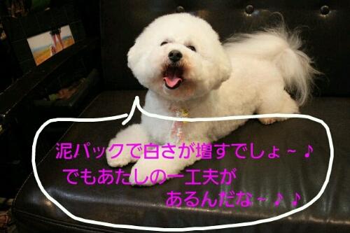 こんばんは!!!_b0130018_17132353.jpg