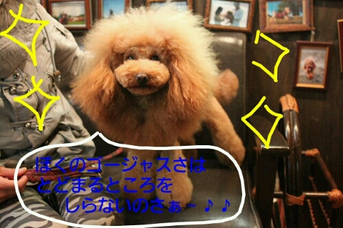 こんばんは!!!_b0130018_17183021.jpg