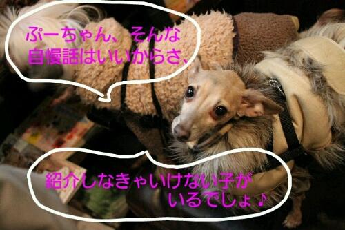 こんばんは!!!_b0130018_1719159.jpg