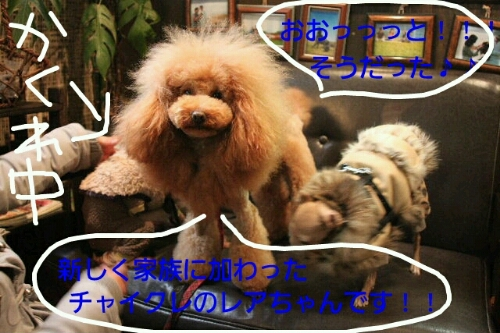 こんばんは!!!_b0130018_17202899.jpg