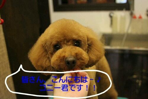 こんばんは!!!_b0130018_17223847.jpg