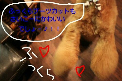 こんばんは!!!_b0130018_1723253.jpg