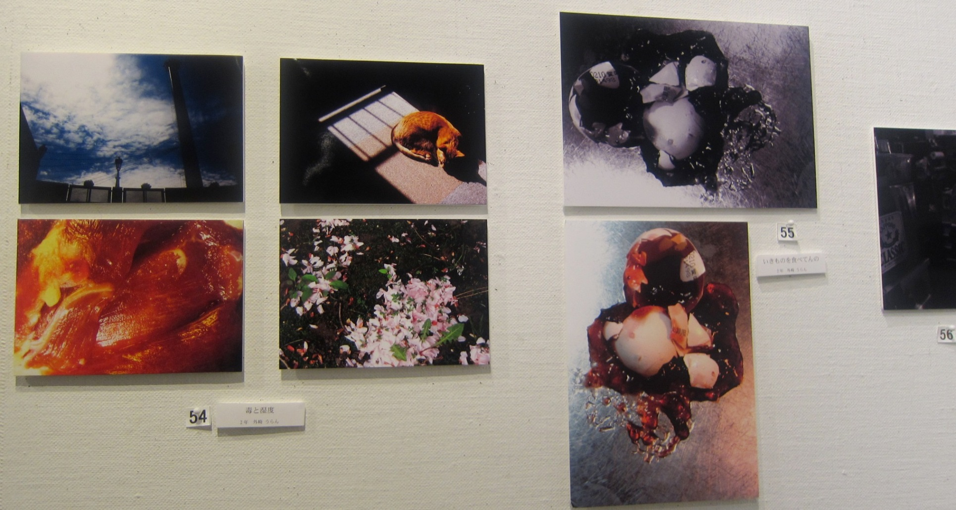 1943)①「札幌大学写真部 卒業写真展 & 学外写真展」 市民g. 終了2月20日(水)~2月24日(日)  _f0126829_2145270.jpg