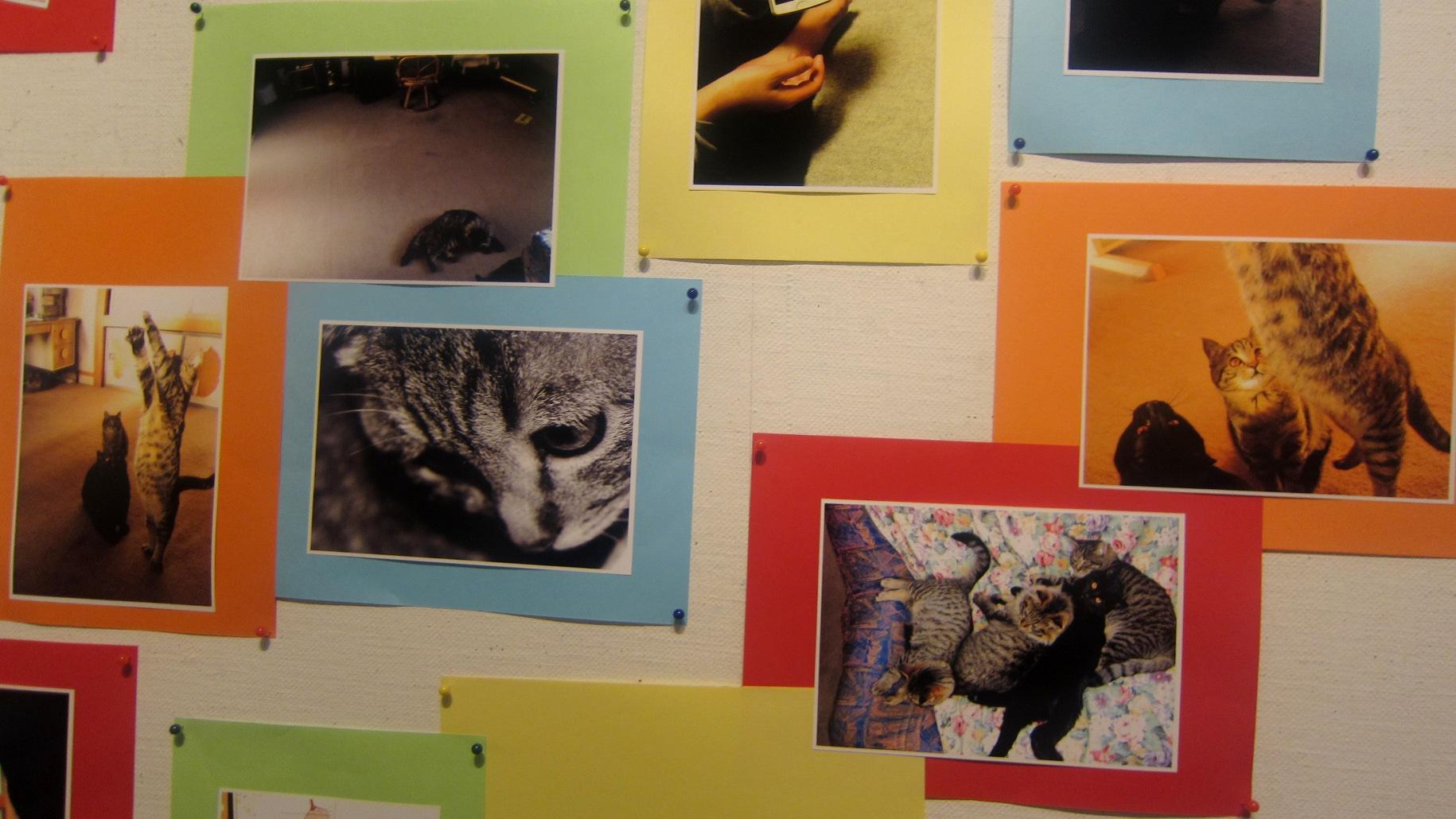 1943)①「札幌大学写真部 卒業写真展 & 学外写真展」 市民g. 終了2月20日(水)~2月24日(日)  _f0126829_22251050.jpg