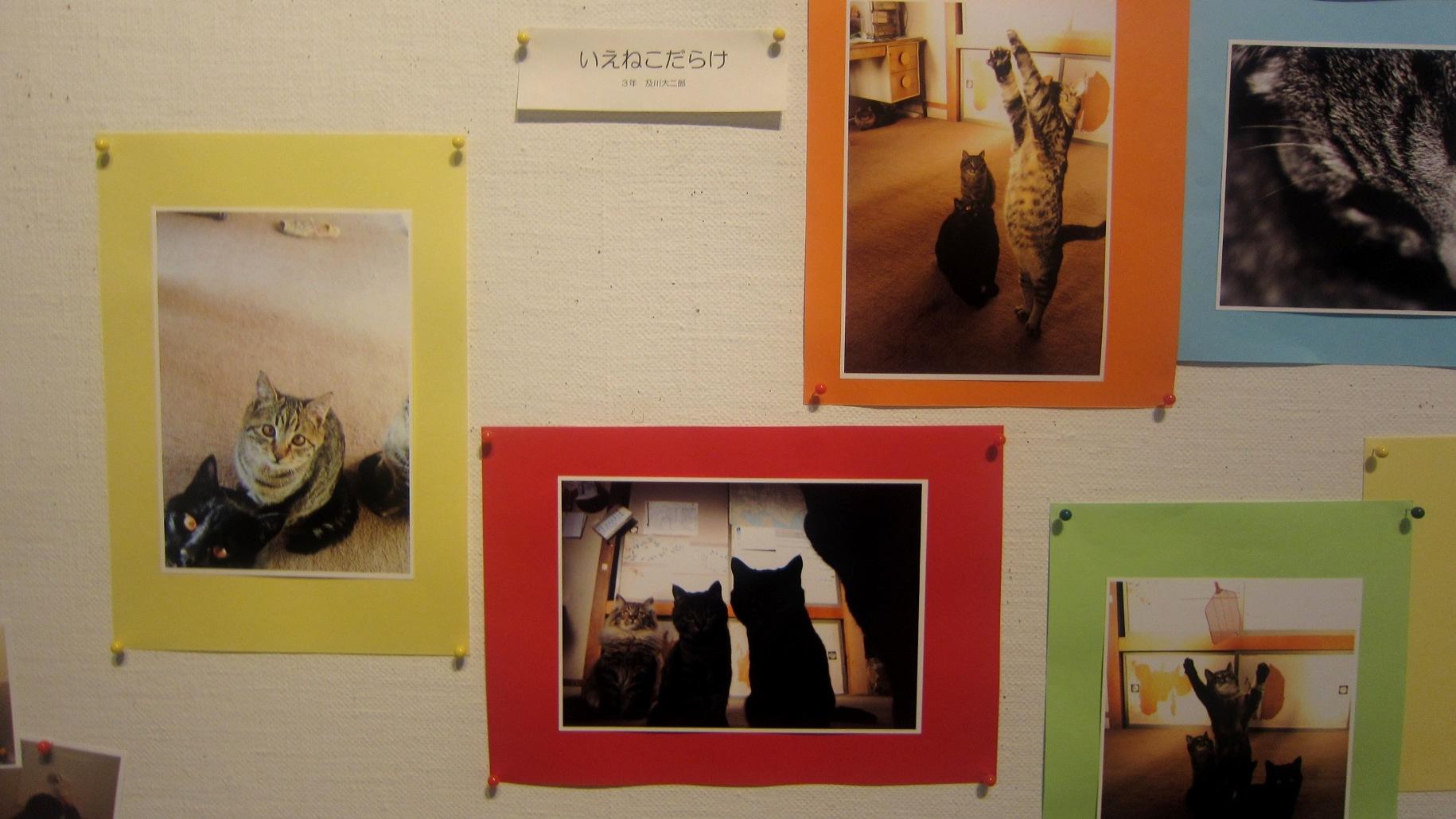 1943)①「札幌大学写真部 卒業写真展 & 学外写真展」 市民g. 終了2月20日(水)~2月24日(日)  _f0126829_22261519.jpg