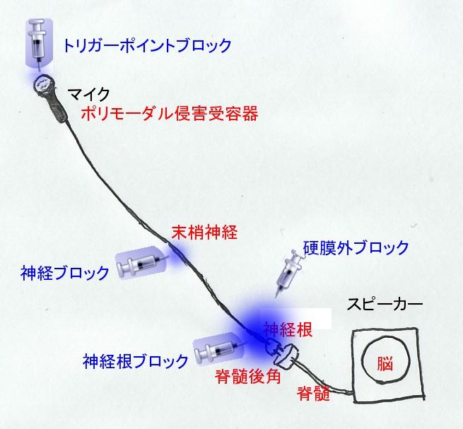 b0052170_1821988.jpg