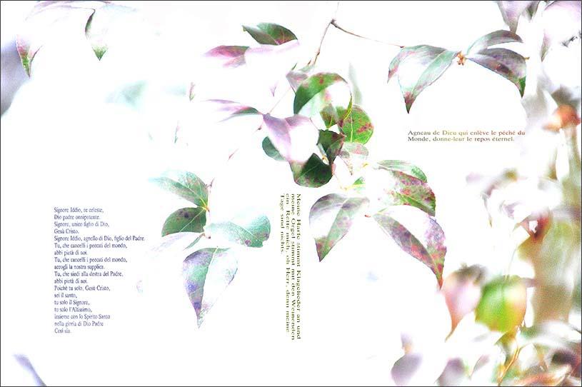 f0198771_012963.jpg
