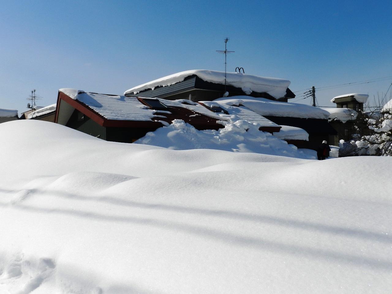そろそろ雪も・・_d0208998_1534198.jpg