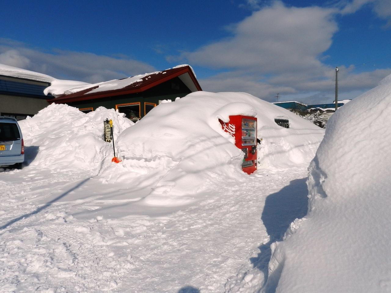 そろそろ雪も・・_d0208998_15351659.jpg