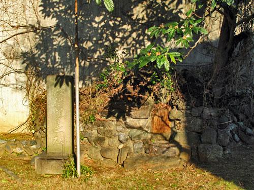 釣堀となった溜池から流れ出していた小川ーエンガ堀向原支流(上流部)を辿る_c0163001_22503961.jpg