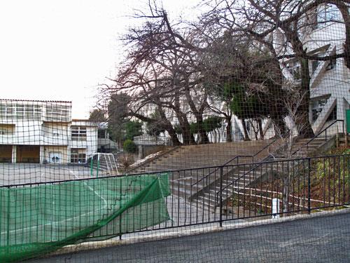 釣堀となった溜池から流れ出していた小川ーエンガ堀向原支流(上流部)を辿る_c0163001_22512654.jpg