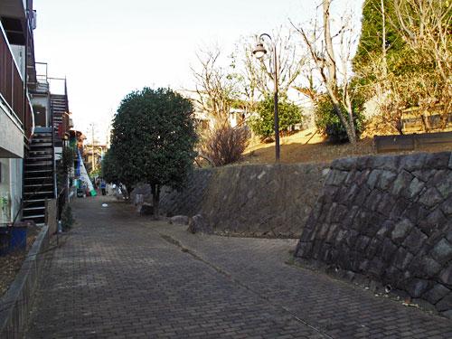 釣堀となった溜池から流れ出していた小川ーエンガ堀向原支流(上流部)を辿る_c0163001_2251468.jpg
