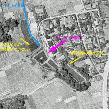 釣堀となった溜池から流れ出していた小川ーエンガ堀向原支流(上流部)を辿る_c0163001_23162347.jpg