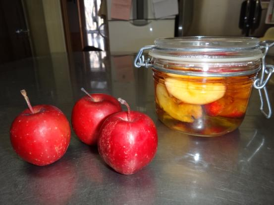 リンゴ酵母のパン_f0064906_1642355.jpg