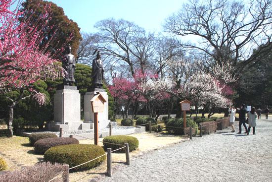 熊本で梅を愛でる1 水前寺公園_e0048413_19105669.jpg