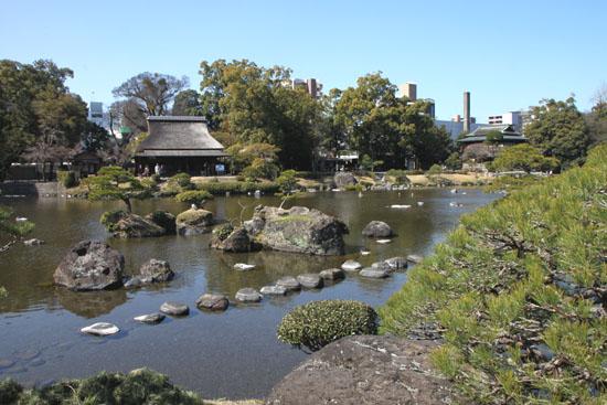 熊本で梅を愛でる1 水前寺公園_e0048413_19112385.jpg