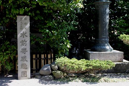 熊本で梅を愛でる1 水前寺公園_e0048413_1994578.jpg
