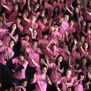 「Pink shirt day(ピンクシャツの日)」_e0162117_10375269.jpg