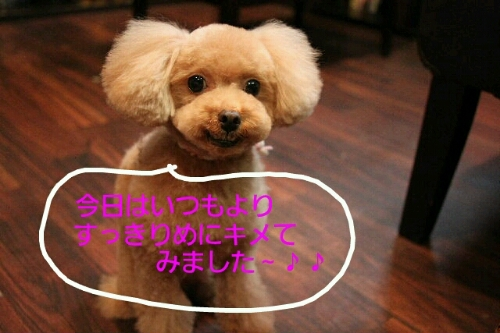 こんばんは!!!_b0130018_14101098.jpg
