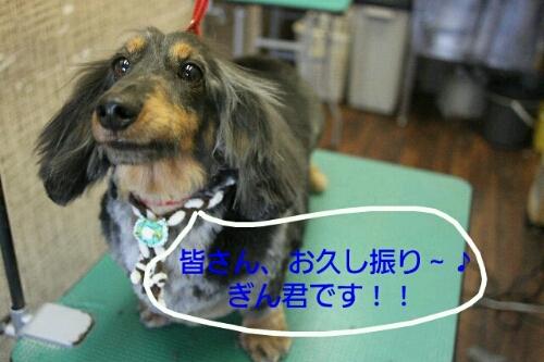 こんばんは!!!_b0130018_14142934.jpg