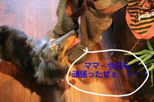 こんばんは!!!_b0130018_14145161.jpg