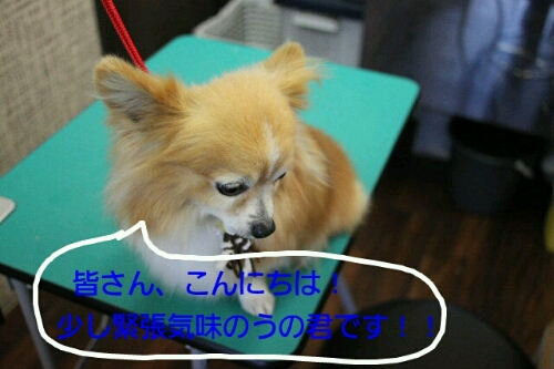 こんばんは!!!_b0130018_1422098.jpg