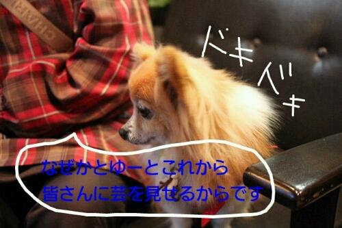 こんばんは!!!_b0130018_1425051.jpg
