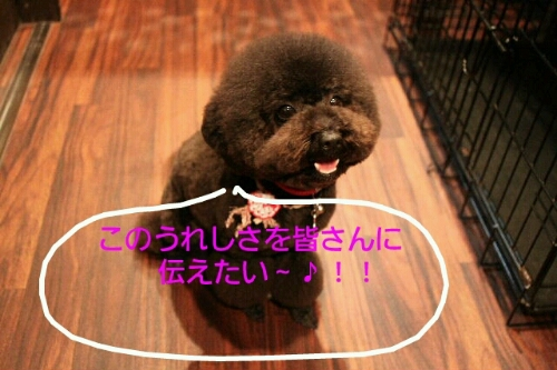 こんばんは!!!_b0130018_1462882.jpg